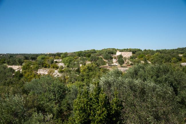 Torre-Sito (29)