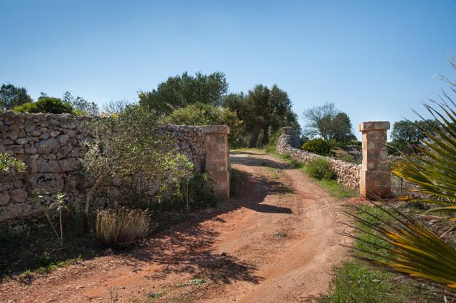 Torre-Sito (30)