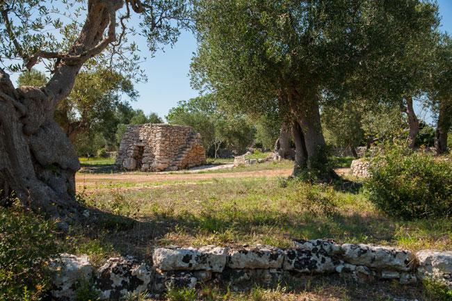 Torre-Sito-(31)